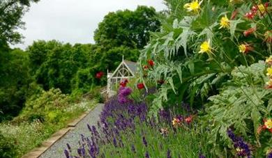 NGS Gardens open for Charity - Readymoney