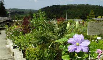 Duchy of Cornwall Nursery, Lostwithiel